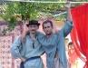 2005_kucko_cserehat029
